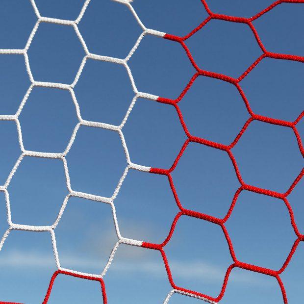 hex nets